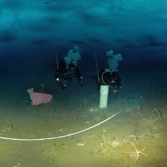 Science Divers Systematically Sample Sediments