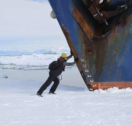Antarctica TopPredatorprogramme
