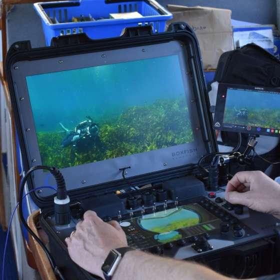 Boxfish ROV control console 4K monitoring and navigation