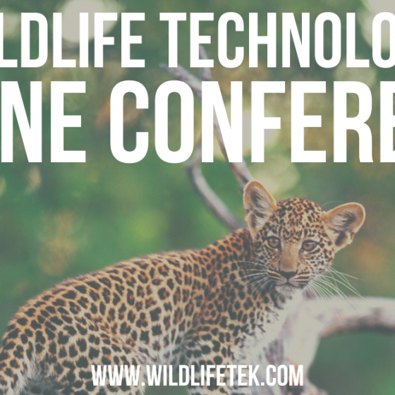 Ben King will be speaking at Wildlife Technology Online Conference