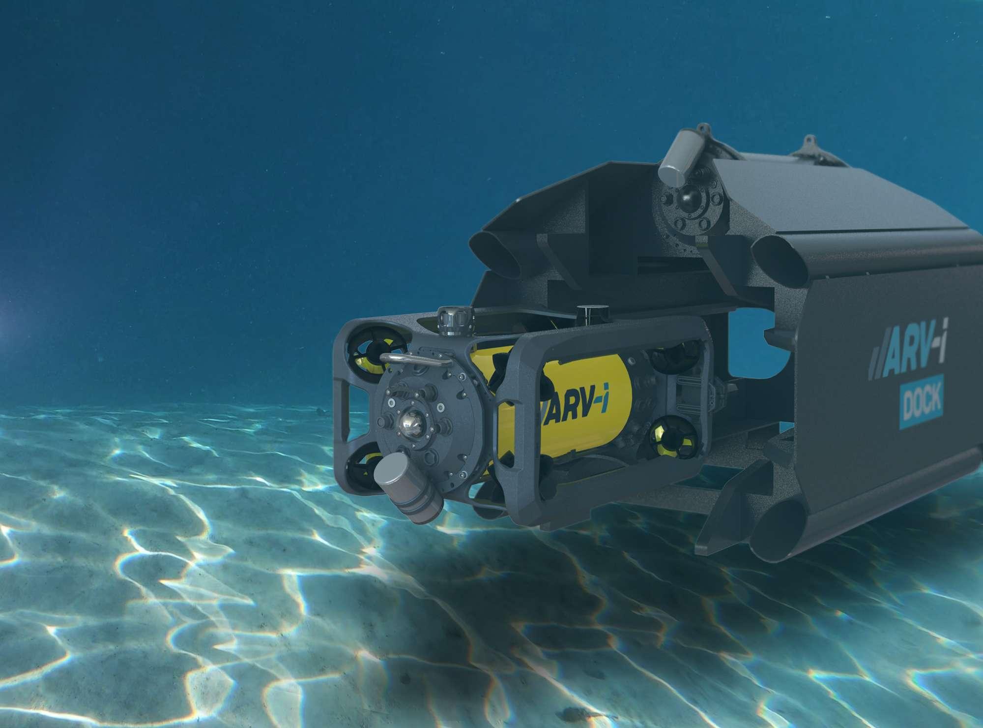 arvi-in-dock-transmark-boxfish-research