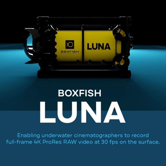 Boxfish Luna New Feature: ProRes RAW Video Capture